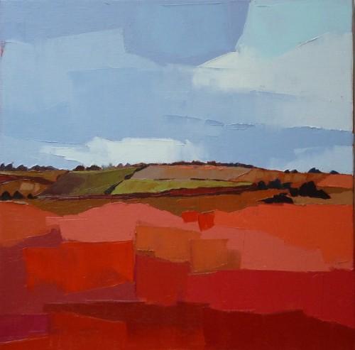 Les champs de la colline. 50x50. Françoise PAPAIL.